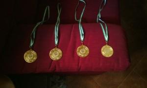 medallas concurso